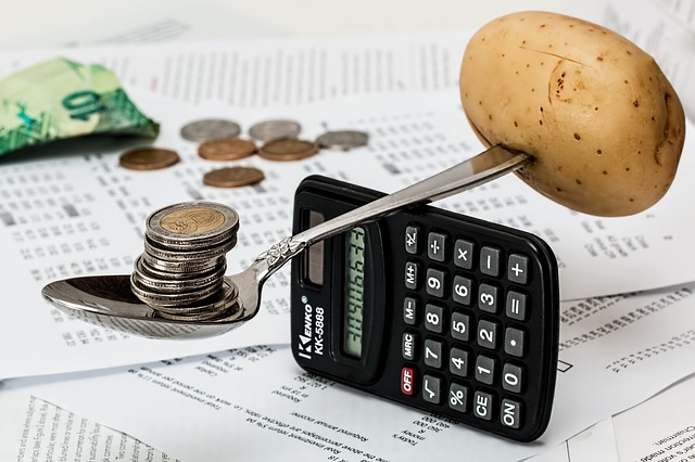 rozpočet domácnosti