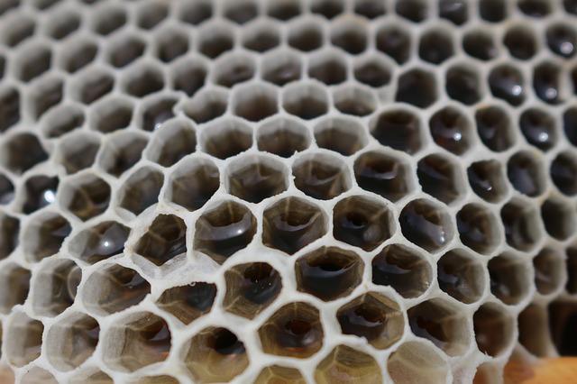 výroba medu