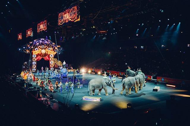 manéž v cirkuse