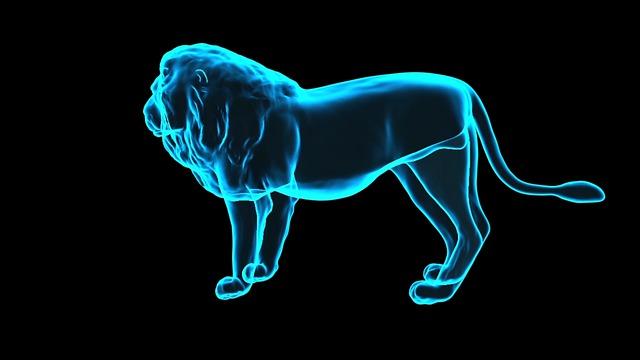hologram lva
